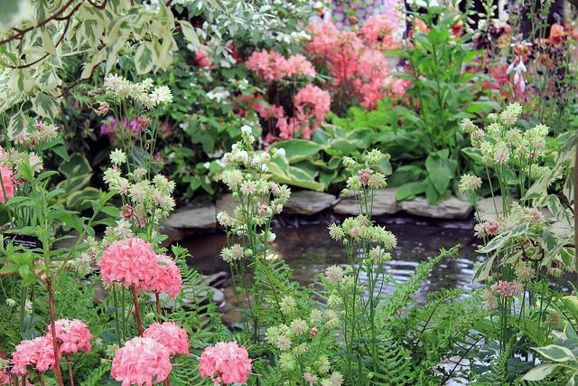 Chelsea Flower Show