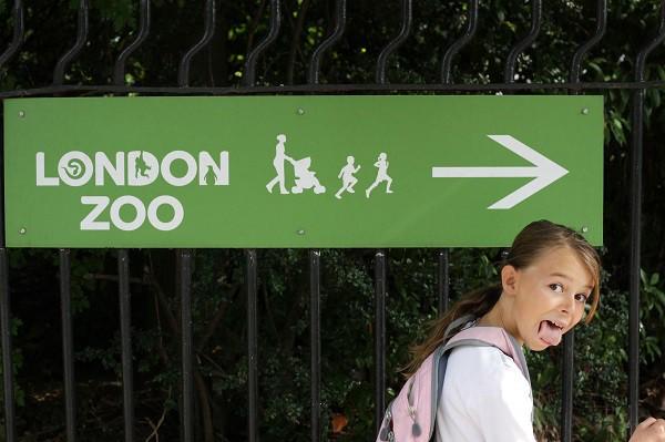London Zoo girl