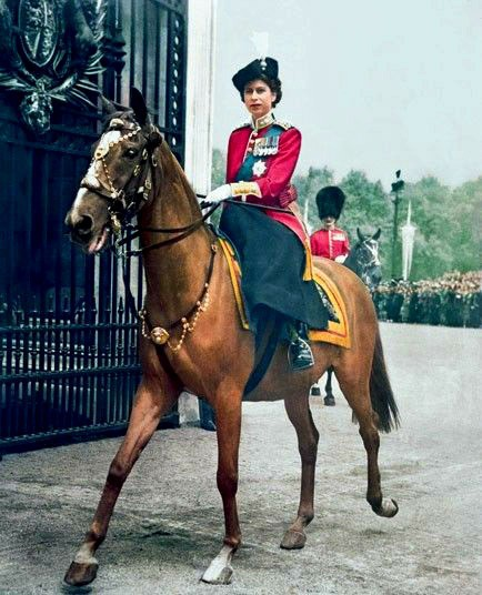 The Queen on a Horse
