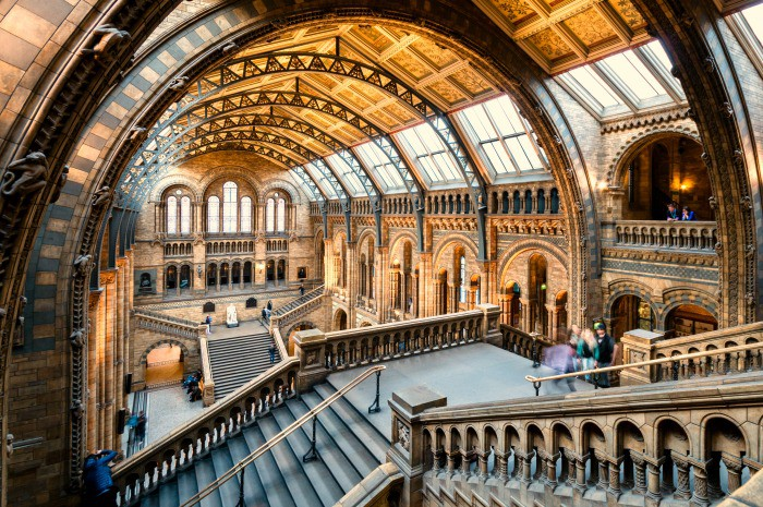 Natural History Lates in London