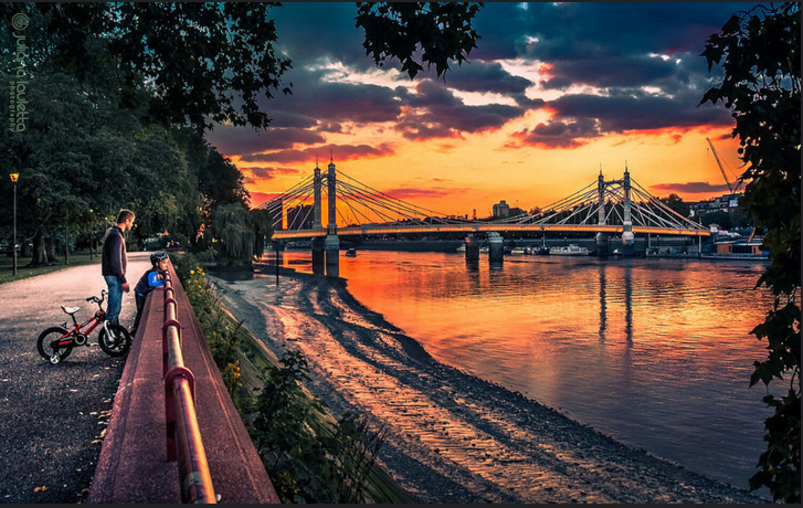 The view of the Thames from Battersea Park