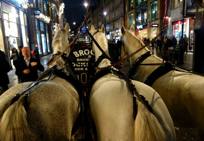 The horses as they travel through London