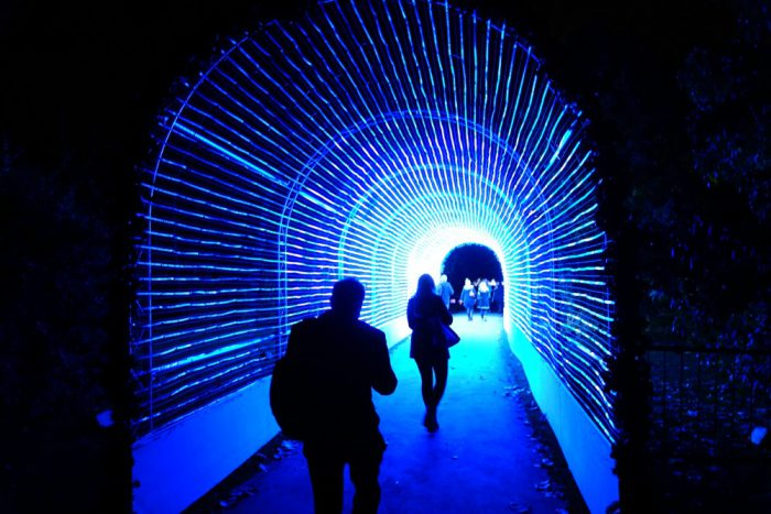 Tunnel of Light at Kew
