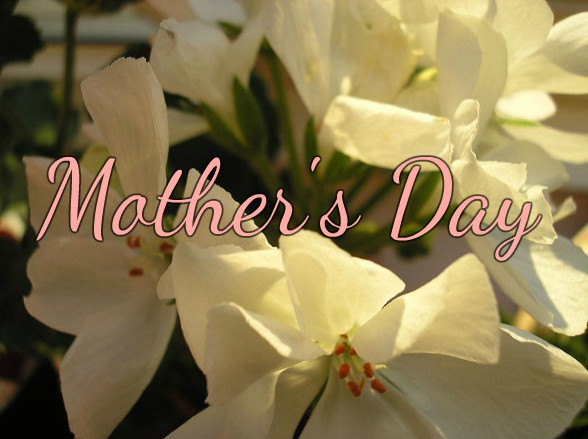 5 Beautiful Ways to Celebrate Mother's Day