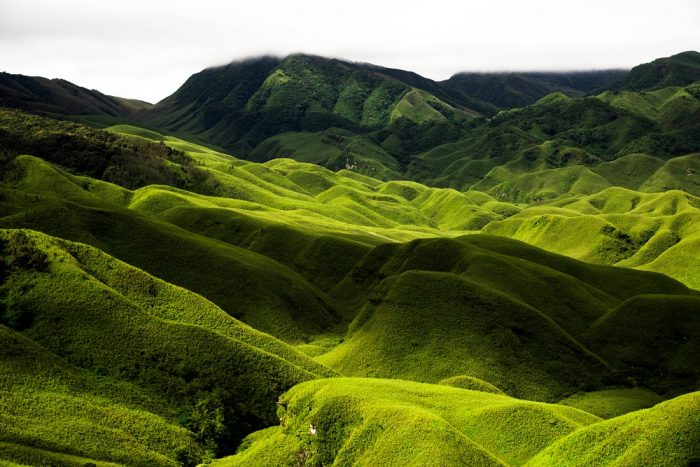 The rolling hills of Dzüko Valley in Nagaland, India