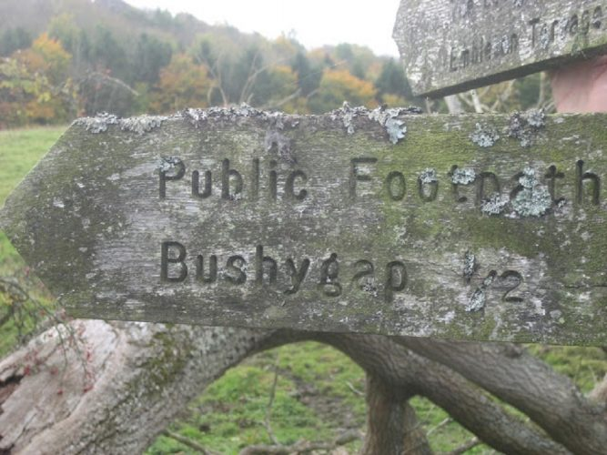 Bushy Gap is great for walking